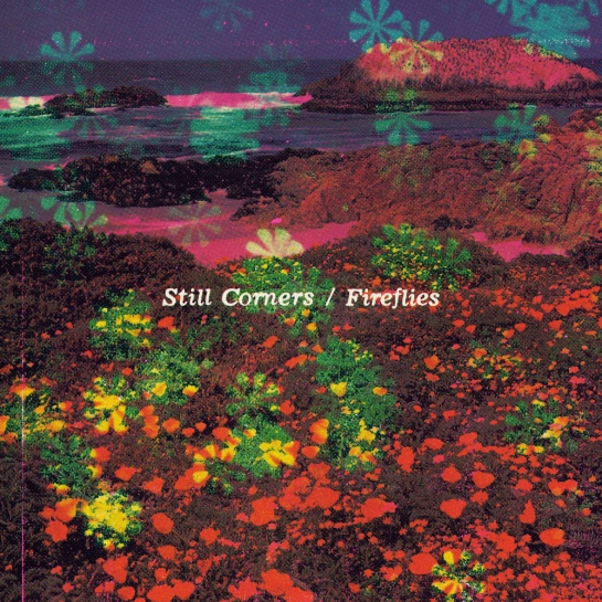 still corners fireflies